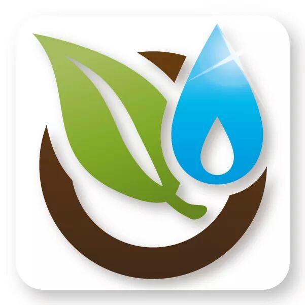 Diseño y Construcción Vida Verde