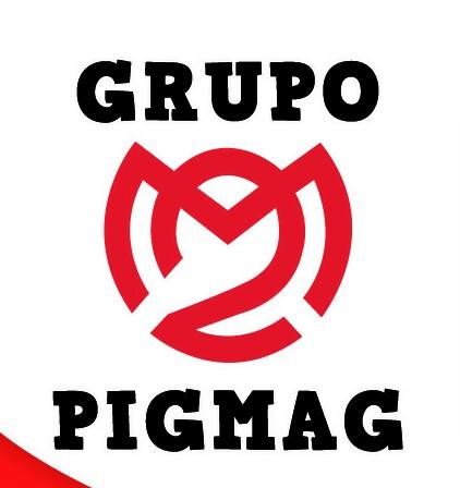 Grupo Pigmag  Mantenimiento En General