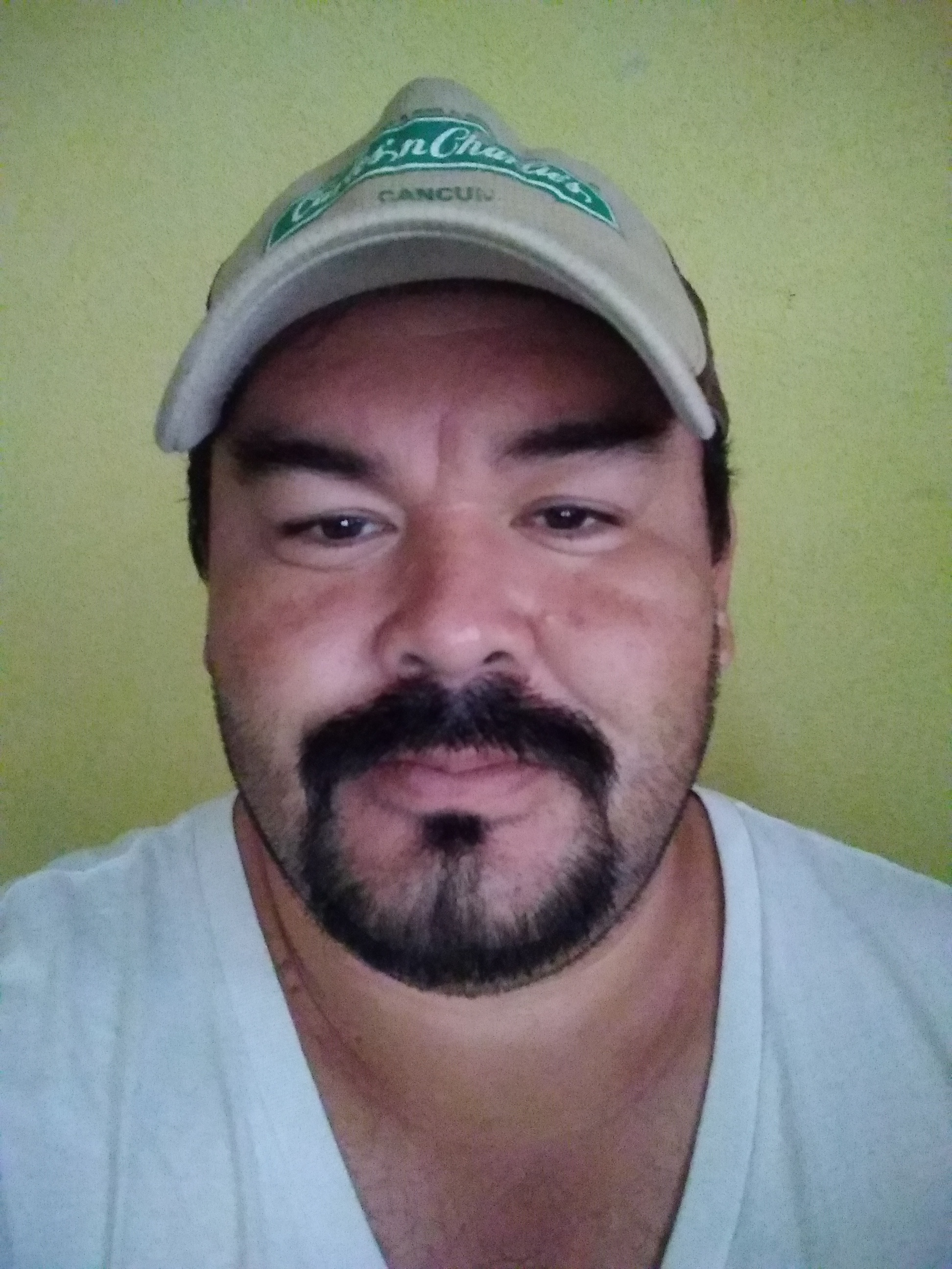 Alfredo Electricista