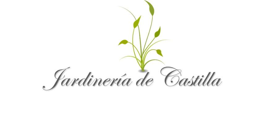 Ruiz Del Toro Landscaping