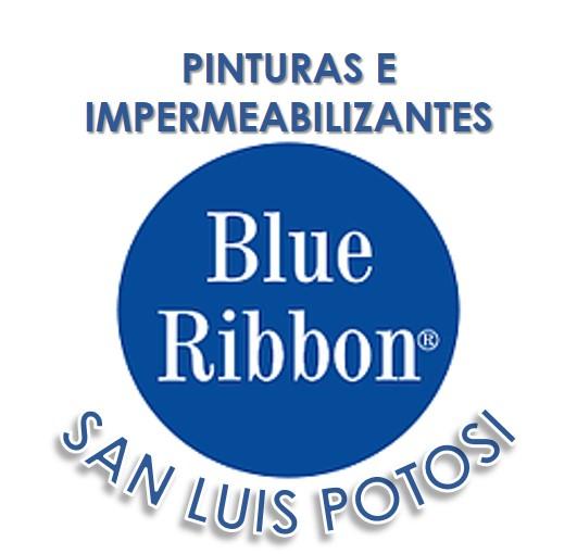Blue Ribbon Slp
