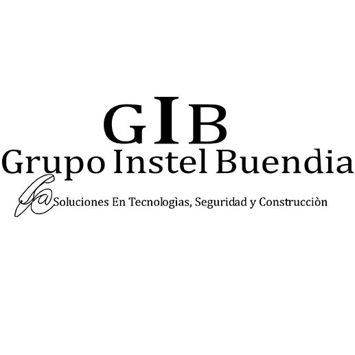 Grupo Instel Buendia