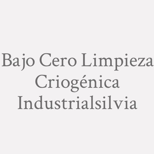 Bajo Cero Limpieza Criogénica Industrialsilvia