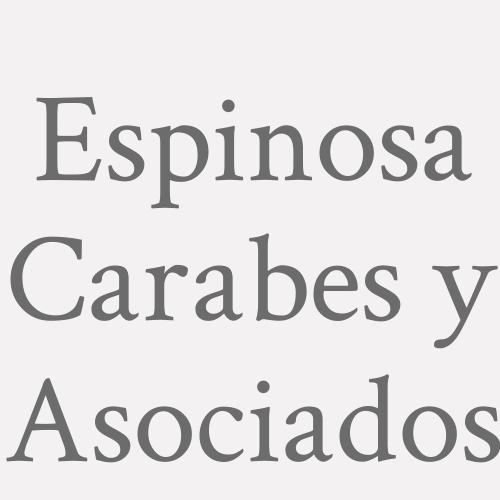 Espinosa Carabes y Asociados