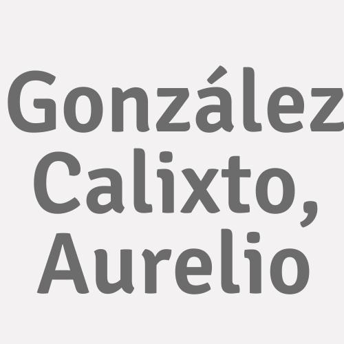 González Calixto, Aurelio