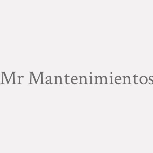 Mr Mantenimientos