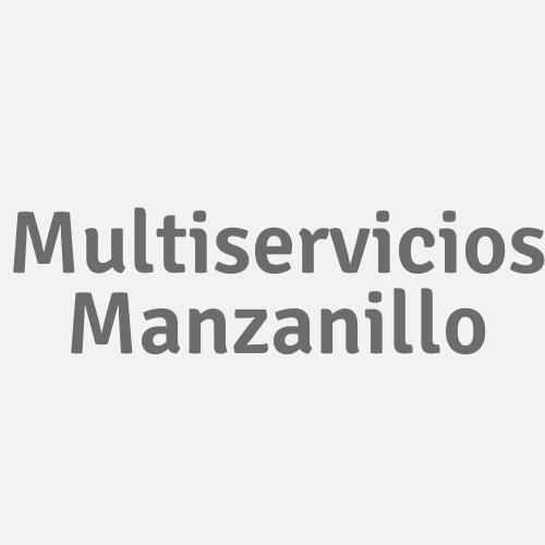 Multiservicios Manzanillo