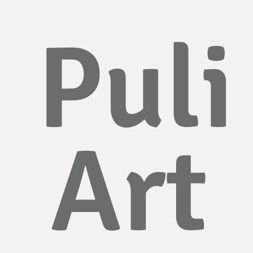 Puli Art