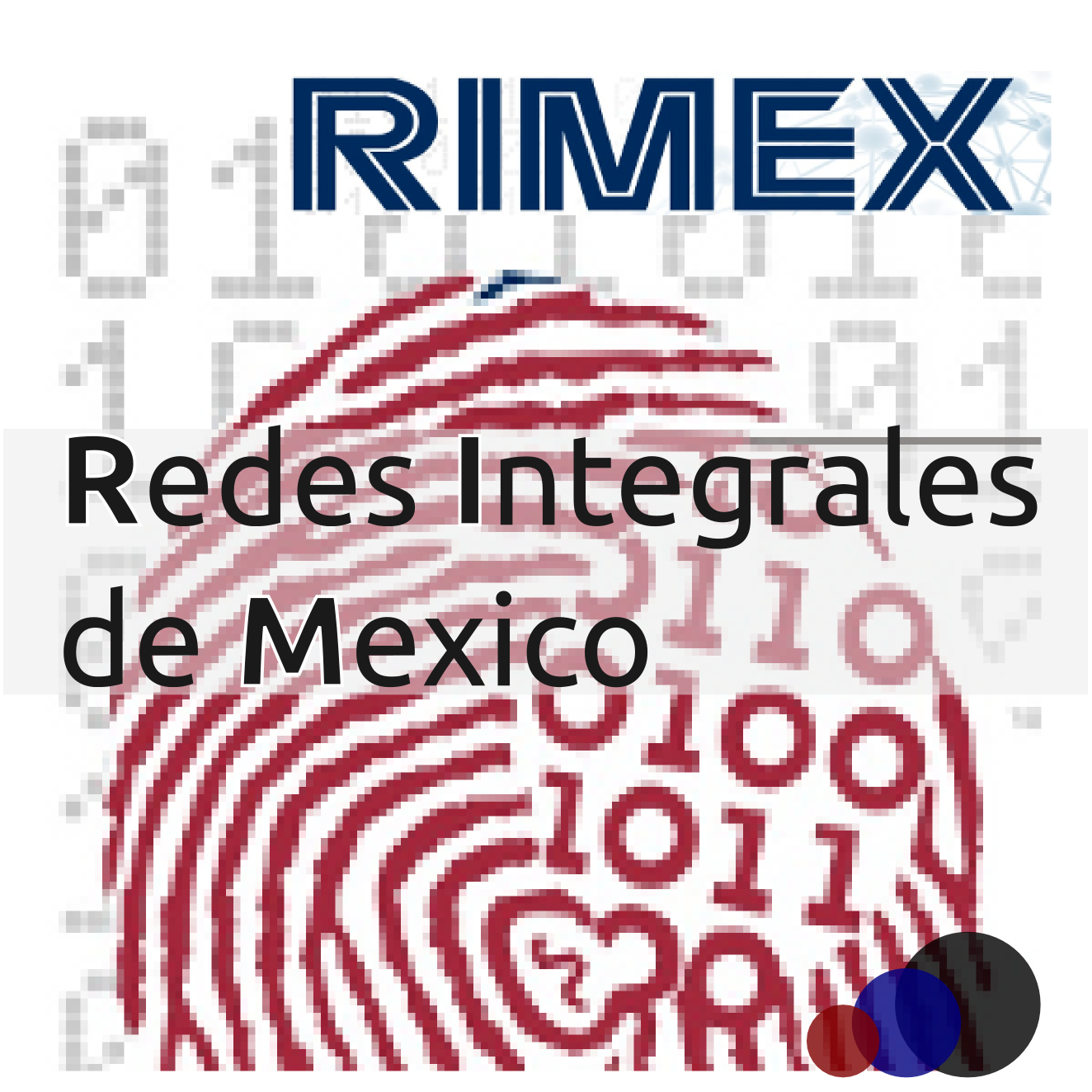 Redes Integrales