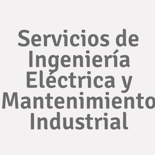 Servicios De Ingeniería Eléctrica Y Mantenimiento Industrial