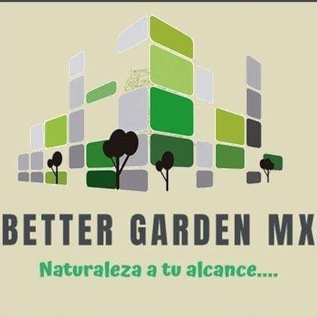 BETTER GARDEN MX