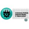 Consultoria Industrial Y Proceso