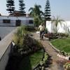 Jardineros  azotea verde para área de chill out