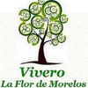 Vivero La Flor De Morelos