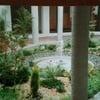 Diseñar y plantar jardín frente a edificio en la banqueta