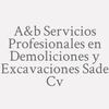 A&b Servicios Profesionales en Demoliciones y Excavaciones SAde Cv
