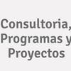 Consultoria, Programas y Proyectos