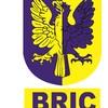 Bric, Construccion Y Mantenimiento