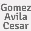 Gomez Avila Cesar