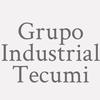 Grupo Industrial Tecumi