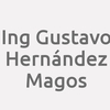 Ing. Gustavo Hernández Magos