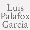 Luis Palafox Garcia