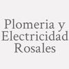 Plomeria Y Electricidad Rosales
