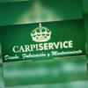 Carpiservice