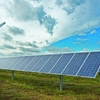 Green Kiin Consultores Sustentables
