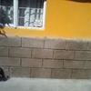 Reparación de fachada y del impermeabilizado del techo
