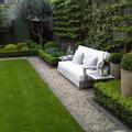 Jardín con pasto natural y plantas