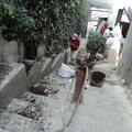 Acondicionado de jardineras en acceso principal