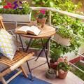 Balcón pequeño con plantas en el barandal