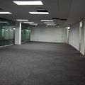 Colocación de luminarias, alfombra y pafón.