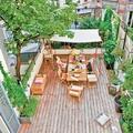 Comedor en la terraza con plantas trepadoras
