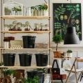 estanterias colgantes para tener plantas
