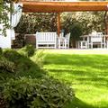 Pasto con plantas y terraza