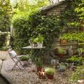 jardín lleno de plantas y muebles de madera
