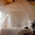 Cama con mosquitero colgado del techo
