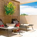 terraza con pared de corcho