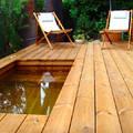 Alberca mini con piso de madera