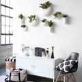 Recibidor con mueble de diseño y plantas