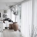 Casa estilo nórdico con piso de madera y macetas