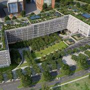 Azoteas verdes en edificios