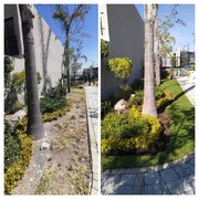 Recuperación de jardin en Parque Residencial