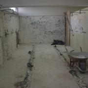 Demolición de loseta y azulejo