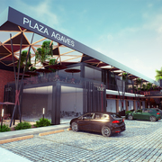 Plaza Agaves