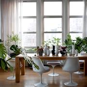 Casa decorada con plantas cerimán