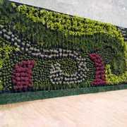 Muro verde terminado