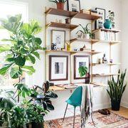 Escritorio en casa decorado con plantas